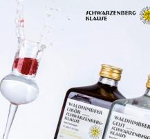 schwarzenberg_klause1